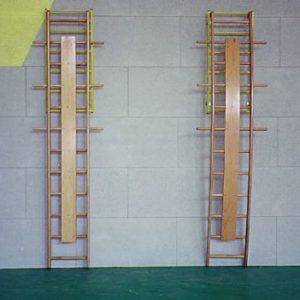 Σκάλες τοίχου αποθεραπείας