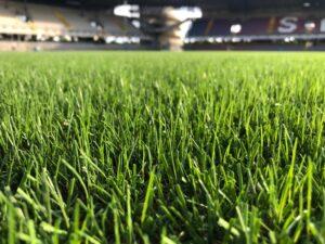 Read more about the article Παρουσίαση Υβριδικού Χλοοτάπητα Power Grass